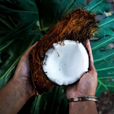 Health or Hype: Coconut Oil